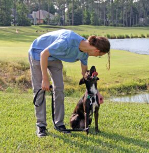 Build a bond with your dog through Pivotal Dog Training's in-home training program